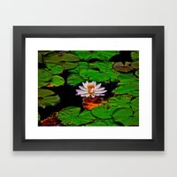 From The Lilypads Framed Art Print