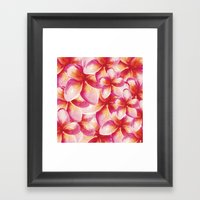 Plumeria Floral Watercol… Framed Art Print