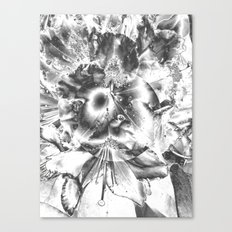 It's life in black and white Canvas Print