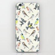 Illustrated Birds iPhone & iPod Skin
