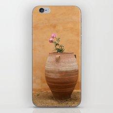 Mediterranean Urn iPhone & iPod Skin