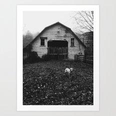 Farm Dog Two Art Print