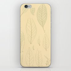 Ex. A iPhone & iPod Skin