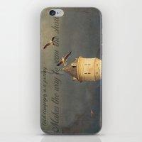 Gulls iPhone & iPod Skin