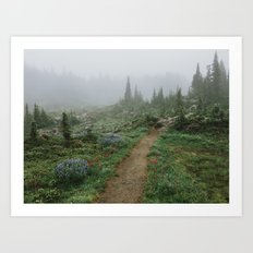 Washington Wildflower Fog Art Print
