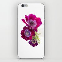 Anemone Trio iPhone & iPod Skin