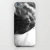 Sleepy iPhone 6 Slim Case