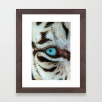WHITE TIGER BEAUTY Framed Art Print