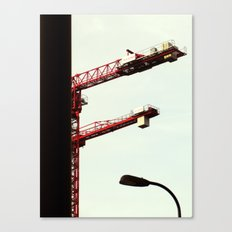 Red Crane Canvas Print