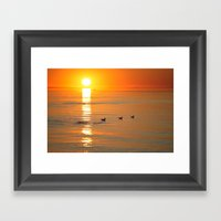 Seagull At Sundown Framed Art Print