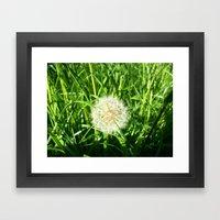 Dandelion Remnants Framed Art Print