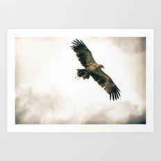 In Flight Entertainment Art Print