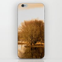 Autumn Is Here iPhone & iPod Skin