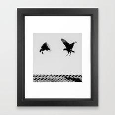 fighting buzzards Framed Art Print