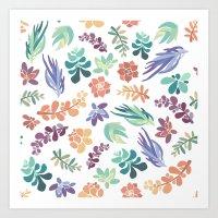 summertime succulents Art Print