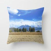 Puebla Throw Pillow