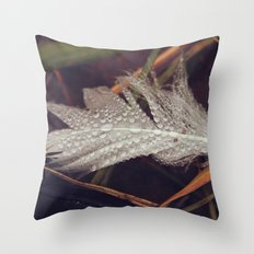 Beach Feathers 3 Throw Pillow