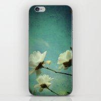 White Magnolias iPhone & iPod Skin
