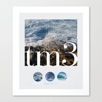 tm3 Canvas Print