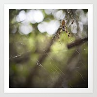 Walking in a spiderweb Art Print