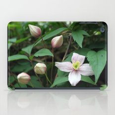 summer pink flower on vine. backyard floral photography. iPad Case