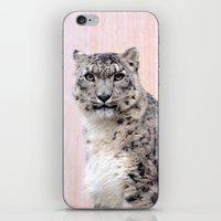 Snow Leopard in Pink iPhone & iPod Skin