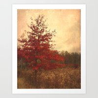 Red Oak Art Print