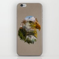The American Bald Eagle iPhone & iPod Skin