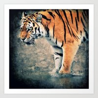 The Tiger Art Print