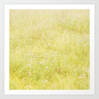 Sweet Light Wild Flowers Art Print
