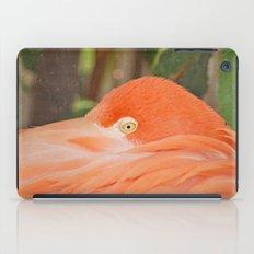 Wary iPad Case