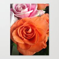 Orange Peels Canvas Print