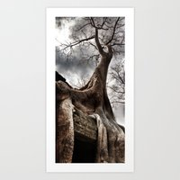 Angkor Wat Tree, Cambodia Art Print