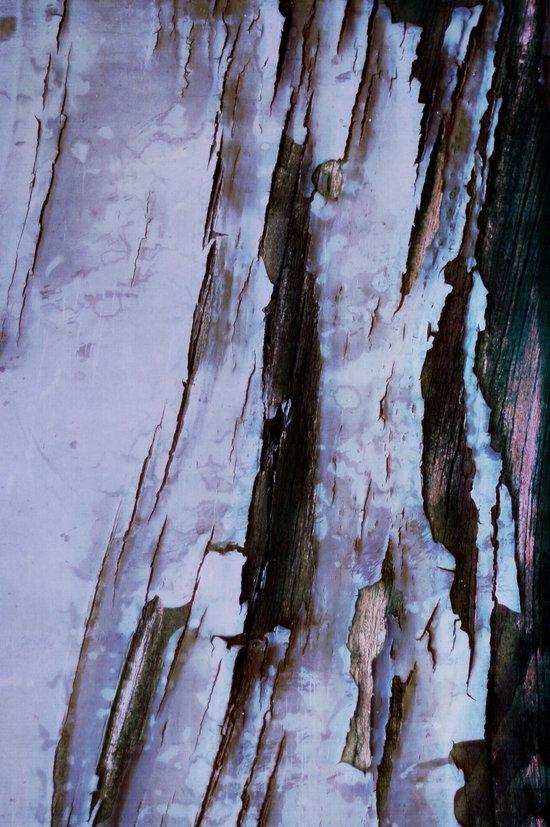 traces Art Print