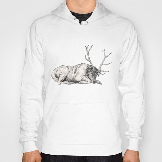 Stag // Graphite Hoody