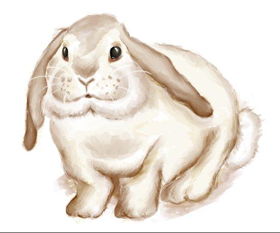 Watercolor Bunny Canvas Print
