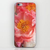 Spring's Best iPhone & iPod Skin