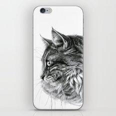 Norvegian Forest Cat iPhone & iPod Skin