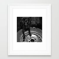 b/w dog Framed Art Print