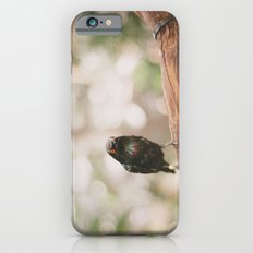 Birdie iPhone 6s Slim Case
