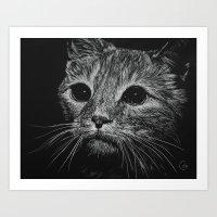 Wide Eyed Cat Art Print