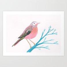 Chirpy Pink Bird Art Print