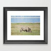 Grazer Framed Art Print