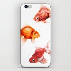 Peces iPhone & iPod Skin