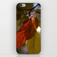 Mending Things iPhone & iPod Skin