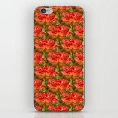 Roses Galore iPhone & iPod Skin