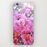 Bougainvillea II iPhone & iPod Skin