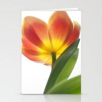 Bright Spring Tulip Stationery Cards