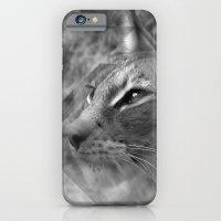 Broken Lynx iPhone 6 Slim Case