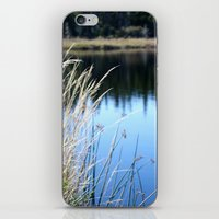 In The Wind iPhone & iPod Skin